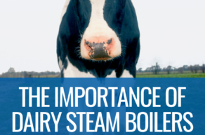Choosing a Steam Boiler for Your Dairy