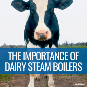 The Importance of Steam Boilers in Dairy Processing