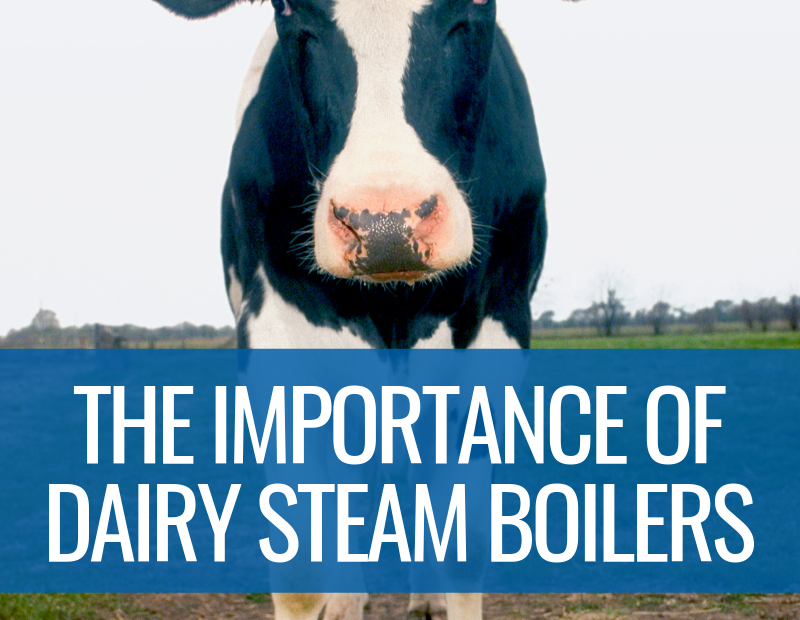 The Importance of Dairy Steam Boilers