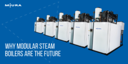 LX Gas-Fired Steam Boilers